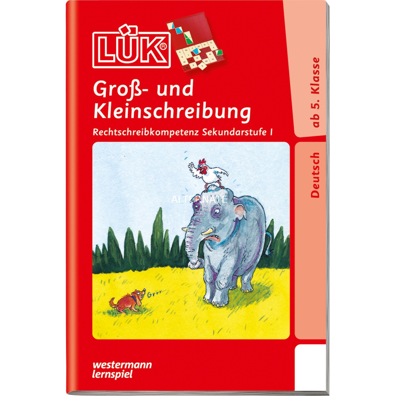 gross-und-kleinschreibung-ab-klasse-5-bornebog-bog-til-indlaring-skolebog